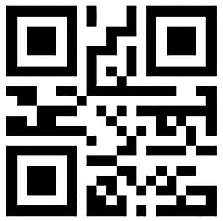 webtiks-paytm2